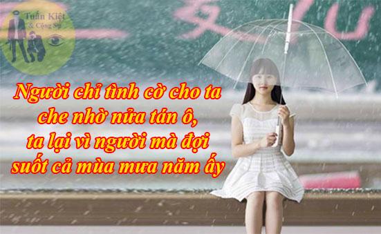 Người chỉ tình cờ cho ta che nhờ nửa tán ô, ta vì người mà đợi suốt cả mùa mưa năm ấy