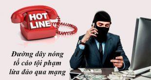 Đường dây nóng tố cáo lừa đảo qua mạng ở TPHCM, Hà Nội